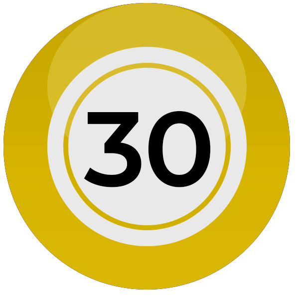 Bingo 30